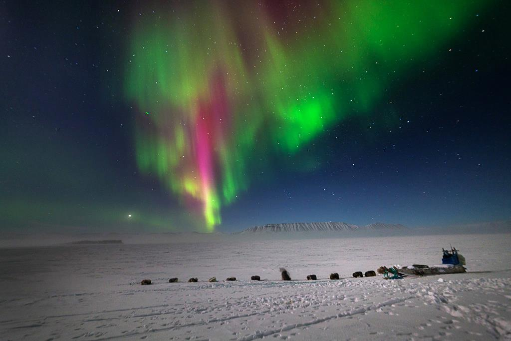 Viajes Groenlandia 2018: Viaje a Groenlandia Bajo la Aurora Boreal