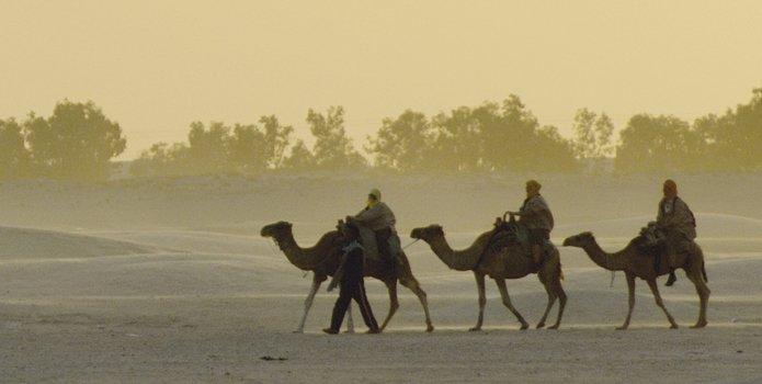 Viajes Emiratos Arabes Enero- Abril 2016: Viaje a Emiratos Arabes 6 días Dubai