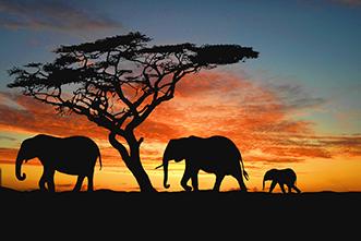 Viajes Namibia 2018: Viaje Namibia Ruta de 16 días