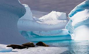 Viajes a la Antártida: Viaje Antártida Tras el mar de Weddell