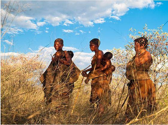 Viajes Botswana 2018: Viaje Botswana y Cataratas Victoria de lujo en grupo