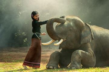 Viajes Camboya 2018: Viaje a Camboya privado completo con extensión a playa 14 días