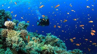 Viajes Egipto Semana Santa 2020: Viaje a Egipto Crucero Nilo y extensión Mar Rojo 11 días