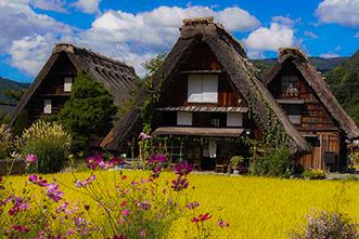 Viajes Japón 2019 y 2021: Viaje Japón por libre 12 días