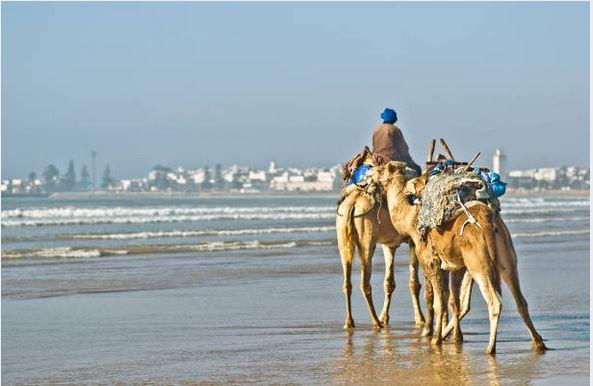 Viajes Marruecos 2018: Viaje Marruecos Fez, Marrakech y desierto