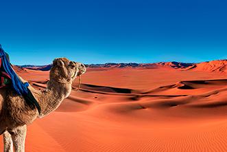 Viajes Marruecos 2019: Viaje a Marruecos Ciudades Imperiales, Ruta de las Kasbahs y desierto