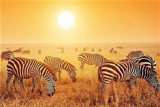 Viajes Sudáfrica 2018 : Viaje Sudáfrica, Lesotho y Suazilandia 20 días