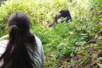 Viajes Uganda 2018: Viaje Safari Gorilas Lujo 15 días