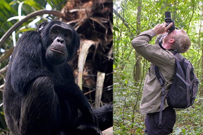 Viajes Uganda Semana Santa 2020: Viaje Safari Gorila Trekking Semana Santa 13 días