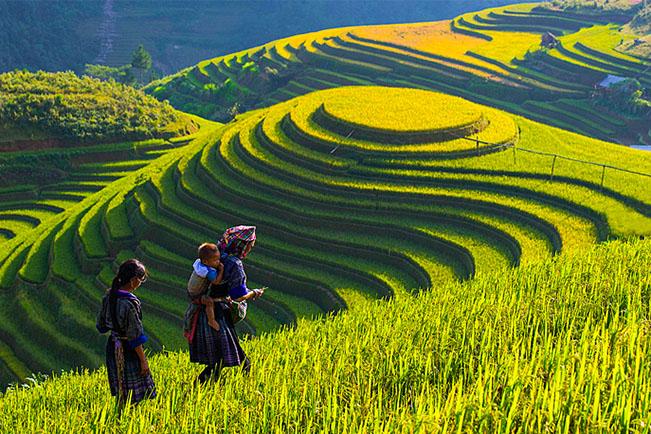 Viajes Vietnam 2018: Viaje a Vietnam intenso 16 días