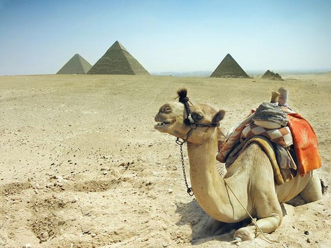 Viajes Egipto Semana Santa 2020: Viaje a Egipto, Cruceros Nilo y Lago Nasser y templos de Nubia 11 días