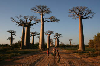 Viajes Madagascar 2017: Viaje Madagascar en Todoterreno 4x4
