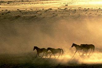 Viajes Namibia 2021: Viaje Namibia en grupo 15 días