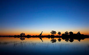 Viaje Okavango lujo 23 días: Safari Namibia, Botswana y Cataratas Victoria 2019