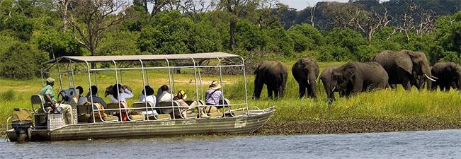 viaje botswana chobe 3