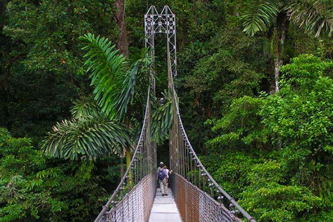 Image result for puentes colgantes san luis costa rica